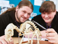 Animal Science Courses