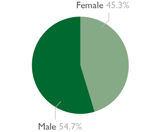 Pie chart showing the gender diversity of 19 plus apprentices