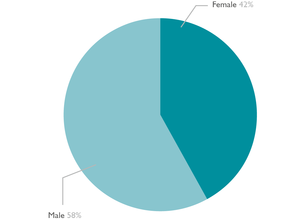 Pie chart showing the gender diversity of Higher Education learners