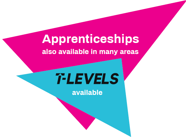 apprenticeships also available in many areas