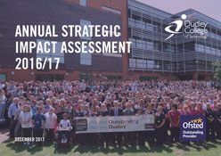 Annual Strategic Impact Assessment 2016-17